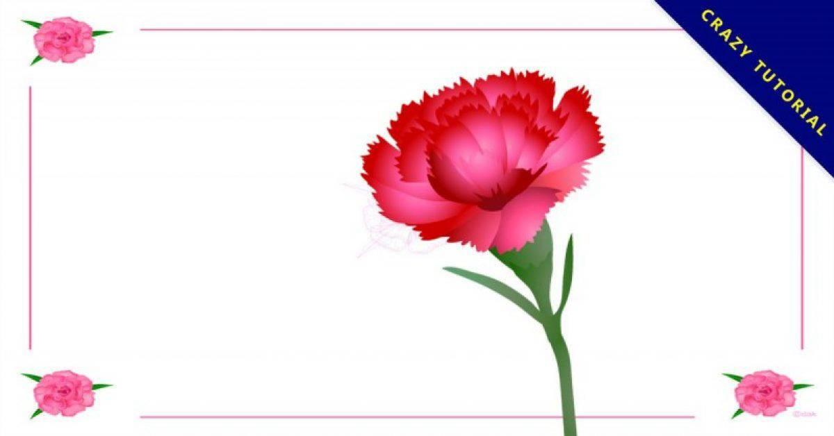 【康乃馨图片】精选10款康乃馨图片下载,康乃馨素材免费推荐款