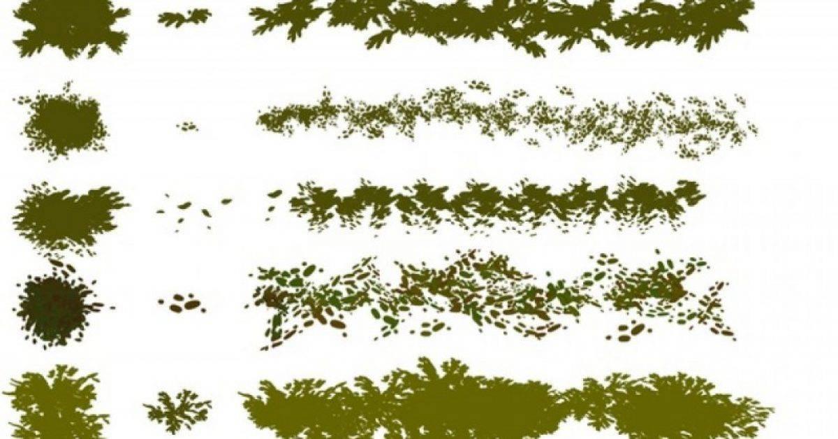 【树叶笔刷】5款专业版Photoshop树叶笔刷,森林树丛笔刷推荐款