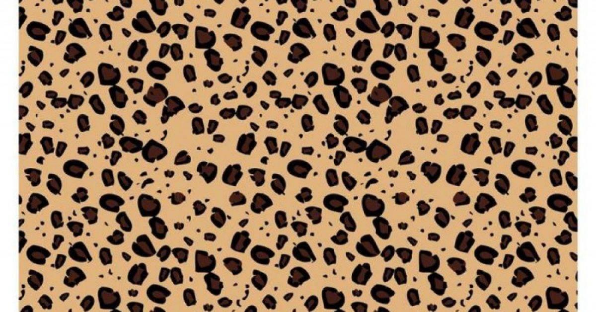 【豹纹桌布】40套 Illustrator 豹纹图案下载,豹纹素材推荐款